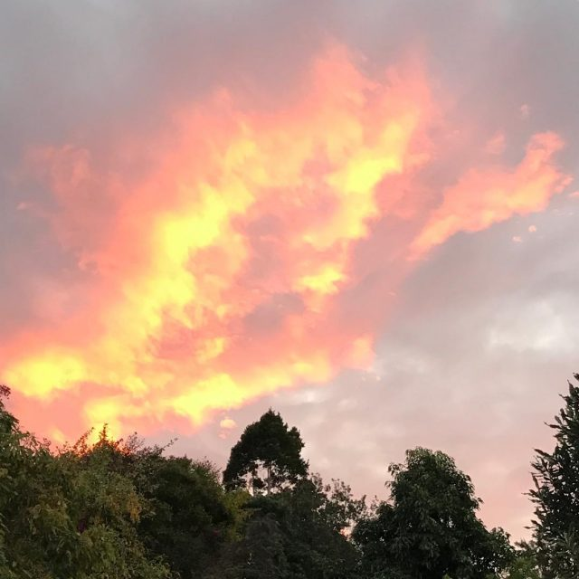 Bellingen sunset nature beauty fire completion grateful
